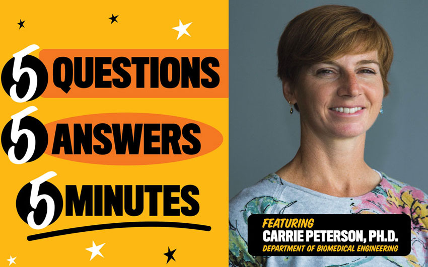5 questions, 5 answers, 5 minutes: featuring Carrie Peterson, PH.D. Department of Biomedical Engineering